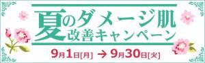 9gatu kyann