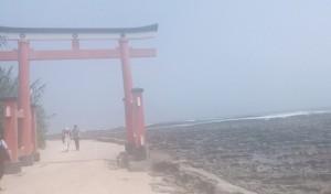 宮﨑 青島