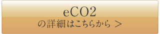 eco2-btn